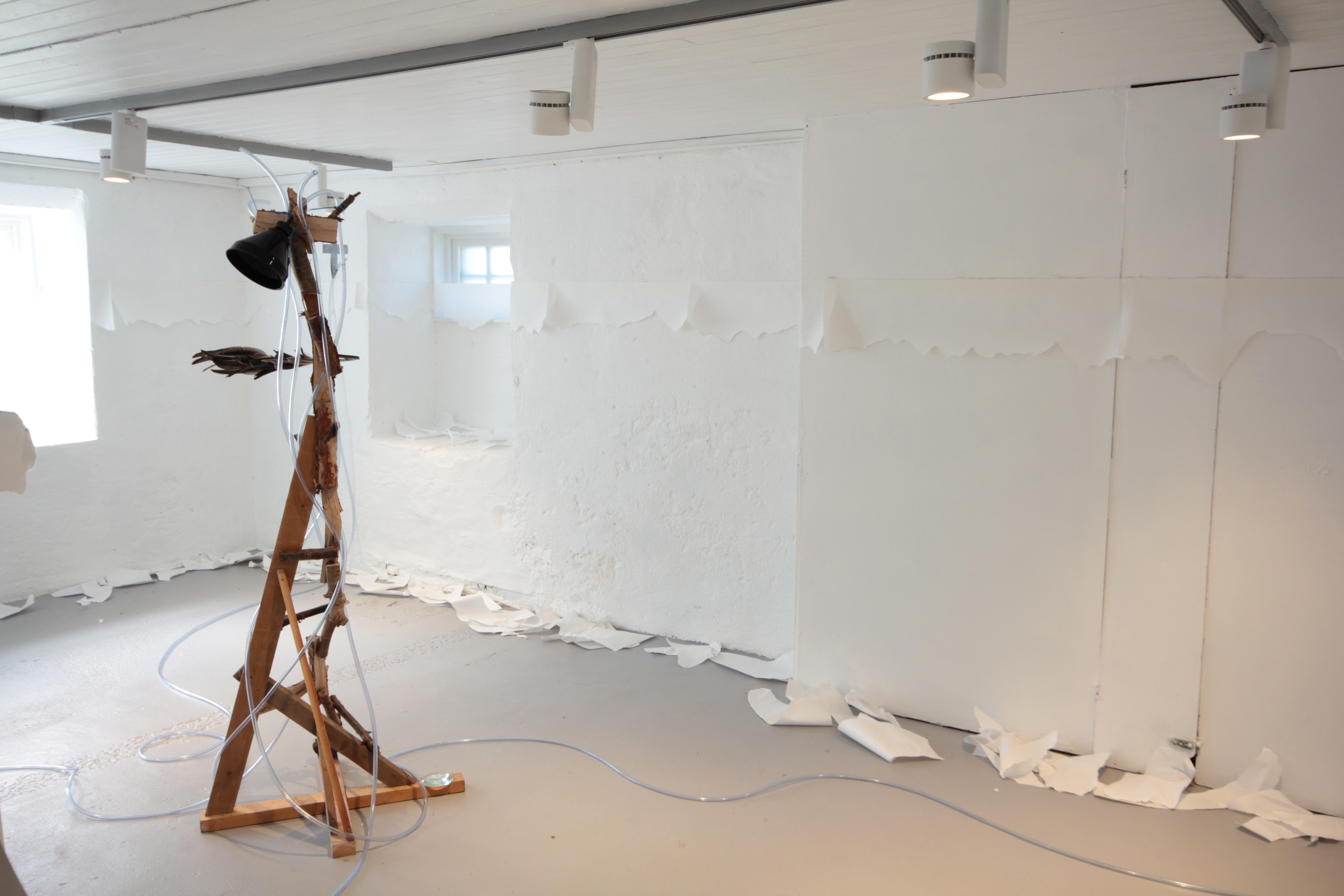 Residency programme at Sirkel4, Molde Norway 2018
